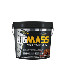 BIGJOY - Bigjoy Sports BIGMASS Gainer + GH FACTORS Çikolata 1200 gr