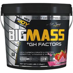 BIGJOY - Bigjoy Bigmass Gainer + GH FACTORS Çilek 1200 gr